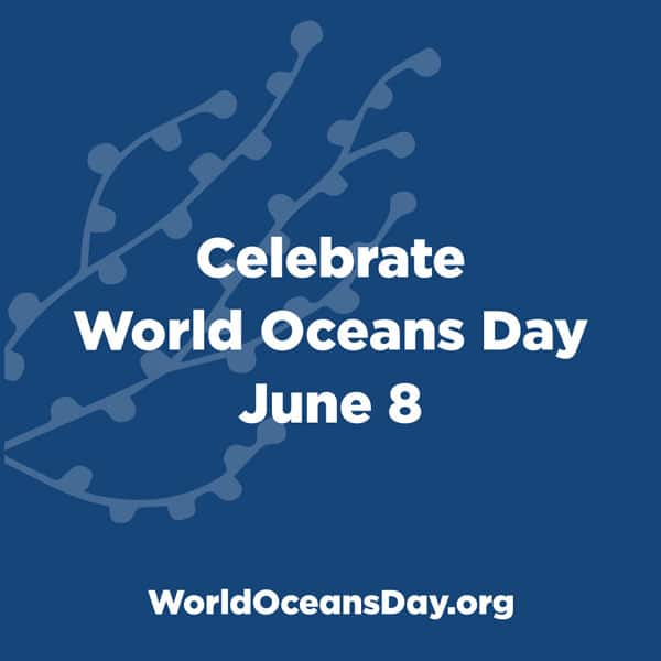 8th June – World Oceans Day 2019
